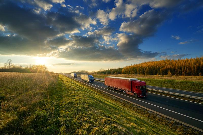 Economy Road Freight